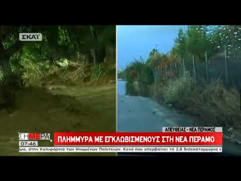 Video - Από τον δικηγόρο της εκπροσωπείται η Ρένα Δούρου στη δίκη για τη φονική πλημμύρα της Μάνδρας