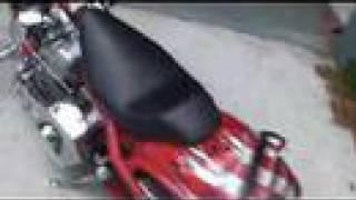 8. 2004 Big Dog Ridgeback