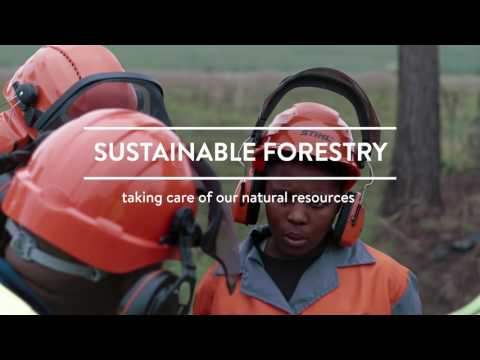 Forest Sector Education and Training for Green Employment