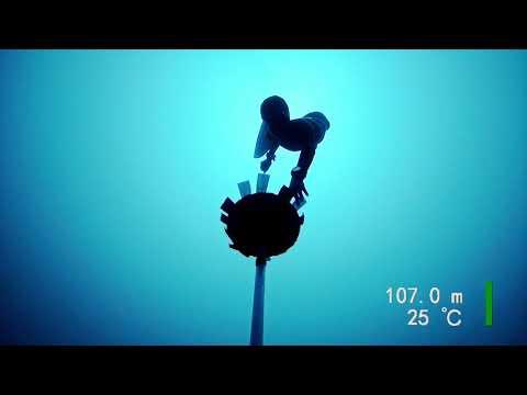 [VIDEO] Le record du monde AIDA CWT de Alessia zecchini !