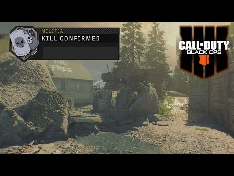 Black Ops 4 Multiplayer Gameplay - Gimme Yo Muhfuggin Dogtags - Kill Confirmed On Militia