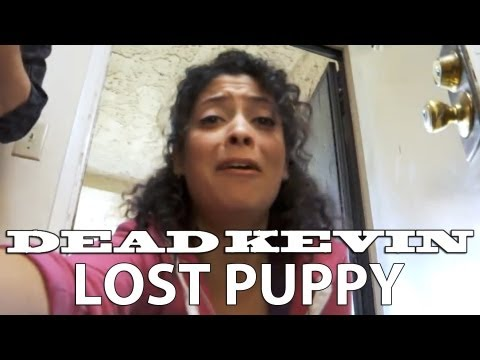 Lost Puppy: Dead Kevin (CC: Studios and Comedy Central)