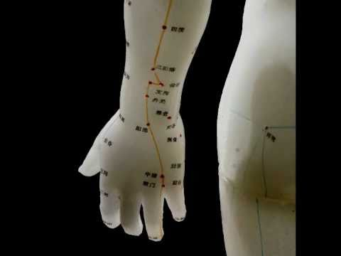 Video of Acupuncture HandBook