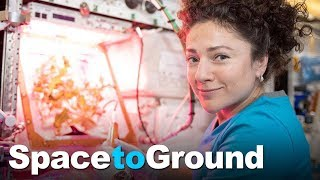 Space to Ground: Continuous Presence: 11/01/2019 by Johnson Space Center