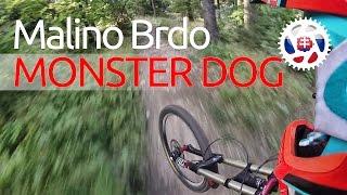 Video Malino Brdo 2016 Monster Dog Prehliadka trate /s komentárom/ MP3, 3GP, MP4, WEBM, AVI, FLV Mei 2017