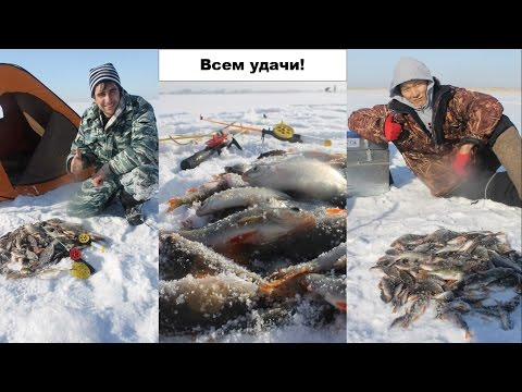 в казахстан про рыбалку видео