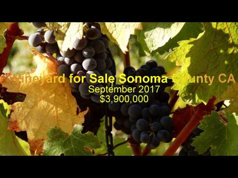 Vineyards for Sale in Sonoma County CA with Winery, Estate Home Site, Current Residence (Sept 2017)