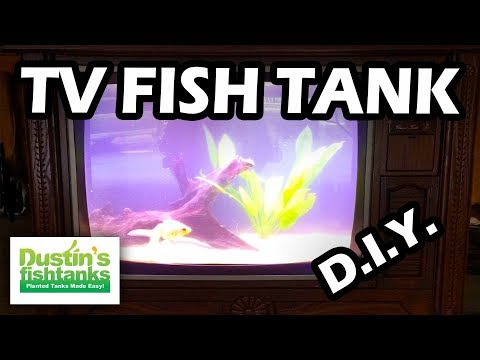 HOW TO BUILD AN AQUARIUM TV FISH TANK!_Akvárium