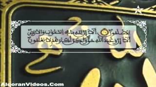 HD المصحف المرتل الحزب 22 للمقرئ محمد إراوي