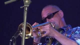 Download Lagu Arturo OFarrill & The Afro Latin Jazz Orchestra live at North Sea Jazz 2016 Mp3