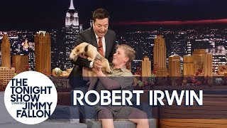 Video Jimmy Gets Attacked by Robert Irwin's Anteater MP3, 3GP, MP4, WEBM, AVI, FLV September 2018