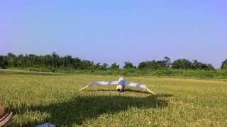 垂直尾翼をカットしてテストフライトしたらフラットスピン