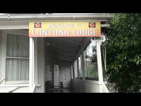 Lantana Lodge International Backpackers Videosu