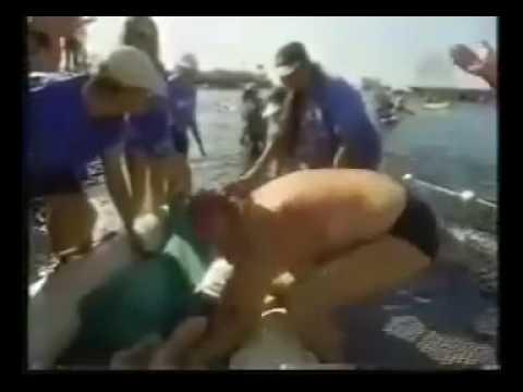maratona e triathlon con figlio paralizzato sulla spalla. commovente!
