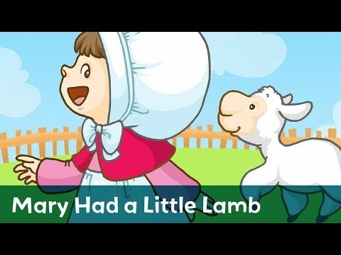 Sing Along: Mary Had a Little Lamb with lyrics from Speakaboos