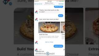Review of Dominos Bot