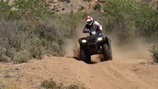 2. 2017 Honda FourTrax Foreman Rubicon 4x4 ATV Review