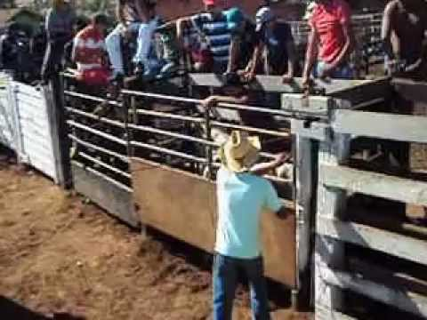 RODEIO NO MARQUINHO CASQUEIRO em itaí cia de rodeio 3d 2012