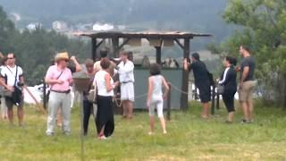 Feria Medieval - 2013 - Exhibición de cetrería
