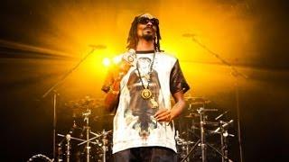 Snoop Lion Collaborates With Dam-Funk, Transforms Into Snoopzilla