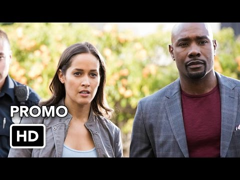 Rosewood 1.13 (Preview)