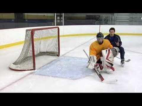 ProHybrid Training DVD Vol. 1-hockey goaltending drills tips techniques