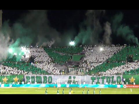 TIFO   Deportivo Cali vs Millonarios 1-0 2015 - Frente Radical Cantos HD - Frente Radical Verdiblanco - Deportivo Cali