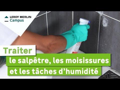Peinture anti moisissure son prix comment la choisir et l 39 appliquer - Sous couche anti moisissure ...