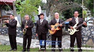 Video Los Montañeses del Alamo Paloma Herrante 2015 MP3, 3GP, MP4, WEBM, AVI, FLV Mei 2019