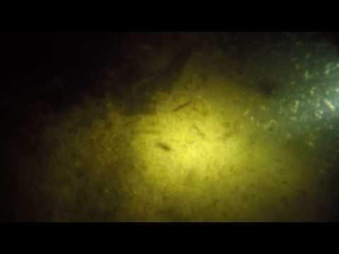 Подводный Металлоискатель AQUAmarine PRO