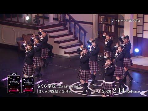 , title : '『さくら学院祭☆2019』トレーラー映像'
