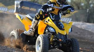 3. canam ds 250
