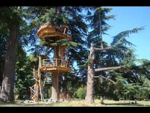 comment construire cabane dans les arbres la r ponse est sur. Black Bedroom Furniture Sets. Home Design Ideas