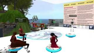 PY1 On Nonprofit Commons In Second Life