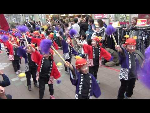 久遠保育園・ルンビニ保育園げんき隊 鹿児島春祭り 大ハンヤ2017