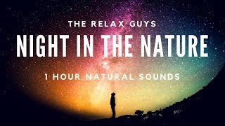 """Imagine you have spent one night in nature. Crickets, owls and other animal voices. Staying alone in nature. Relaxing will create effects that make your focus easier. No car voices, no human voices, no annoying noises. With a good time.● 1 Hour Singing Nightingales  Real Time Bursting Nightingales  No Loop  Nature Sounds 🐦 53● Leave a LIKE, Comment & Subscribe!  ● Join us on Youtube for weekly update: https://goo.gl/Hry5Ut● 1 Hour Relaxing Waterfall with Peaceful Bird Sounds  Nature Sounds Series 🌊 49: https://goo.gl/H6KQhQThe Relax Guys on Social Media:● Facebook: https://www.facebook.com/therelaxguys/● Twitter: https://twitter.com/TheRelaxGuys● Instagram: https://www.instagram.com/therelaxguys/● VK: https://vk.com/therelaxguys● Youtube: https://www.youtube.com/therelaxguyz-~-~~-~~~-~~-~-Please watch: """"1 Hour Crackling Logs for Christmas - Fireplace - Full HD -  Fireplace With Classical Music 🔥 59"""" https://www.youtube.com/watch?v=jzGM25dAmEU-~-~~-~~~-~~-~-"""