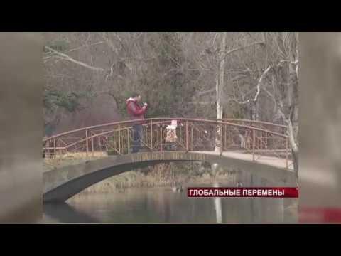 Глобальные перемены в Гагаринском парке