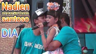 nadin santoso - dia - new pallapa