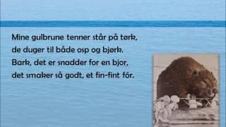 Sangen om beveren - Bjoren