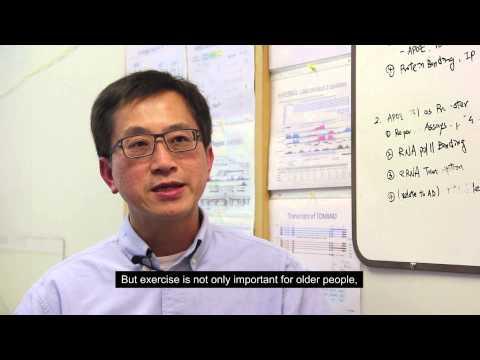 Professor Stephen (Cheng-en) Yu, PhD - Keeping Your Brain Active