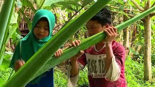 Video ORANG PINGGIRAN | TETES KERINGAT DAN AIR MATA BUNDA (06/09/18) 2-3 MP3, 3GP, MP4, WEBM, AVI, FLV Desember 2018