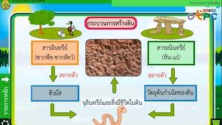 สื่อการเรียนการสอน กระบวนการเกิดดิน ม.2 วิทยาศาสตร์