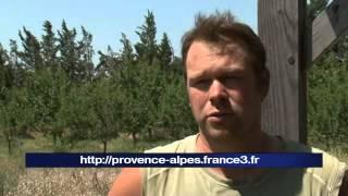 Mallemort France  city photos gallery : Mallemort : Amap bio contre carrière Lafarge