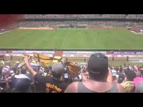 La rebel la copa libertadores es mi obsesion - La Rebel - Pumas - México - América del Norte