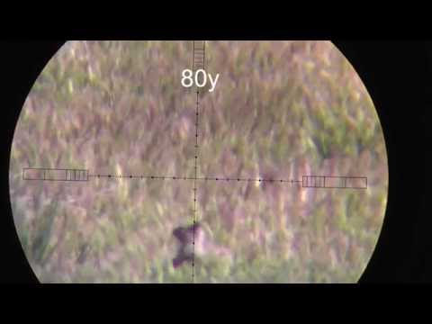 .25 cal airgun - This is a HUNTING video, dont watch this video if you dont like hunting. I took my .25 cal Hatsan BT65 out to eliminate of some ground squirrels from a prope...