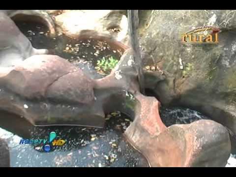 Programa Araguaia Rural Cachoeiras em Baliza GO