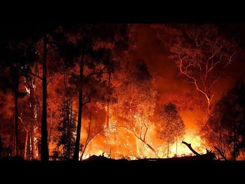 Australien: Buschfeuer wüten weiter - Feuerwehr ist pausenlos im Einsatz