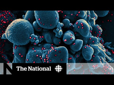 Variants could change Canada's COVID-19 situation 'rapidly': experts
