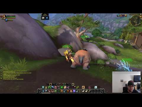 Warmode bm hunter pvp BFA beta WHERE DID THEY ALL COME FROM?!