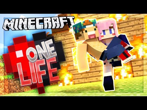 LIZZIE SAVED MY LIFE! | One Life SMP #13
